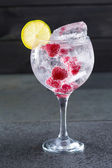 Gin tonic cocktail with raspberry lima slice and ice — Stock Photo