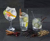 Gin tonic cocktails with lima cucumber and grapefruit — Stock Photo