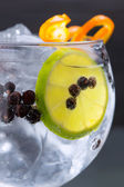 Gin tonic cocktail macro closeup with juniper berries — Stock Photo