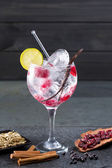 Gin tonic cocktail with vanilla raspberry lima slice and ice — Stock Photo