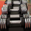 Adjustable weight dumbbells in a row with selective focus - Stock Photo