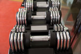 Adjustable weight dumbbells in a row with selective focus — Stock Photo