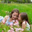Twin sisters whispering ear on spring flowers meadow — Stock Photo