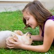 Stock Photo: Children kid girl playing with puppy dog chihuahua