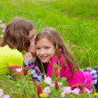 Happy twin sister girls playing whispering ear in meadow — Stock Photo