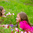 Happy twin sister girls playing on spring flowers meadow — Stock Photo