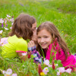 Happy twin sister girls playing whispering ear in meadow — Stock Photo #26183605