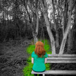 Stock Photo: Lonely woman rear view looking to forest sitting on bench