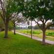 Creek park with track and green lawn grass — 图库照片