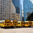 School bus row at San Francisco market photo mount — Stockfoto