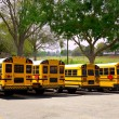 American typical school buses row in a park outdoor - Stok fotoğraf