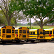 American typical school buses row in a park outdoor — Stock Photo
