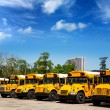 American typical school buses row in a parking lot — Stock Photo #26188775