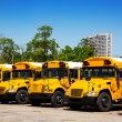 American typical school buses row in a parking lot — Stock Photo #26188959