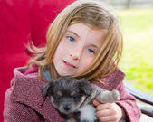 Blond girl hug a gray pyppy chihuahua dog — Stock Photo