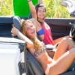 Happy crazy teen surfer girls smiling on car — Stock Photo #30644389