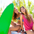 Stock Photo: Happy crazy teen surfer girls smiling on car