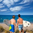 Stock Photo: Boys teen surfers rear view looking at beach