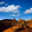 Monument Valley West Mitten Butte Utah Park — Stock Photo