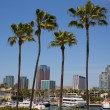 Long Beach California skyline from palm trees of port — Stok fotoğraf