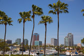 Long Beach California skyline from palm trees of port — Stock Photo