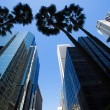 LA Los Angeles downtown with palm trees — Stock Photo