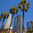 LDowntown Los Angeles Pershing Square palm tress — Stock Photo #31999381
