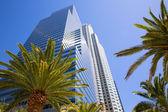Downtown LA Los Angeles skyline California palm trees — Stock Photo