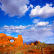 Arches National Park in Moab Utah USA — Stock Photo