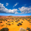 Arizona desert near Colorado river USA — Stock Photo
