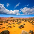 Stock Photo: Arizondesert near Colorado river USA