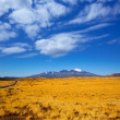 Arizona Highway 89 US with view of snow Humphreys peak — Stock Photo