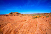 Arizona desert near Colorado river USA orange soil and blue sky — Stock Photo