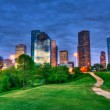 Houston Texas modern skyline at sunset twilight from park — ストック写真
