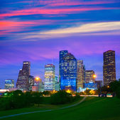 Houston Texas modern skyline at sunset twilight from park — Stock Photo