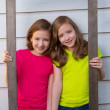 Twin sister girls posing with aged wooden border frame — Stock Photo