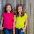 Stock Photo: Twin sisters with different hairstyle posing on wood fence