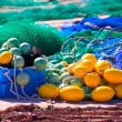 Stock Photo: Fihing tackle in Formentera Mediterranean islands