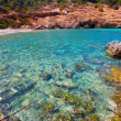 Ibiza Cala Moli beach with clear water in Balearics — Stock Photo