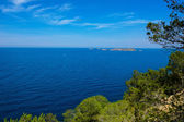 Cala Vedella Vadella Ibiza island Mediterranean sea — Stock Photo