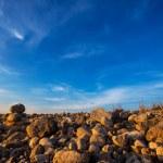 Постер, плакат: Ibiza Cap des Falco beach rolling stones in San Jose