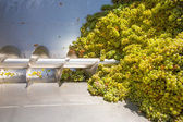 Chardonnay corkscrew crusher destemmer in winemaking — Foto Stock