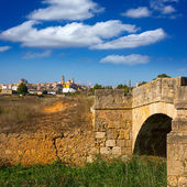 Requena in Valencia province a wine region of Spain — Stock Photo