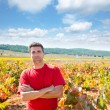 Stock Photo: Harvester winemaker farmer proud of his vineyard