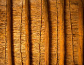 Mediterranean cane roof in traditional wooden roofing — ストック写真