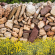 Masonry stonewall in spring with flowers Menorca — Stock Photo #35138813