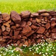 Stock Photo: Masonry stonewall in spring with flowers Menorca