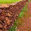 Masonry stonewall in spring with flowers Menorca — Stock Photo #35139073