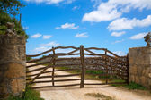Menorca traditional olive tree wooden fence in Balearic — Stock Photo