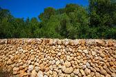 Menorca masonry stonewall Cala en Turqueta Ciutadella — Stock Photo